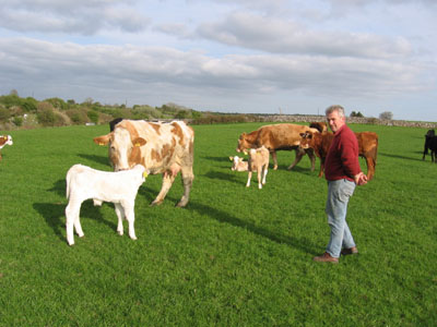 Michael Biggins on his farm in Ballynalty